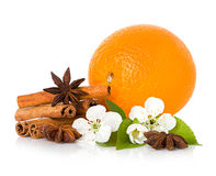 Stick cinnamon, anise star, branch flowers and orange fruit.  Stock Photo