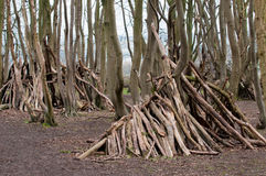 Stick den. Hand made stick den in a forest clearing Stock Image