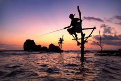 Traditional Stick Fisherman of Koggala in Southern Sri Lanka at Sunset royalty free stock images