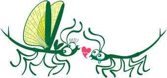 Stick insects shyly falling in love Royalty Free Stock Images