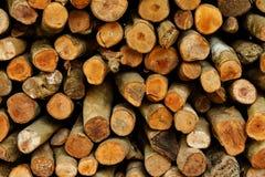 Firewood. Stick texture firewood background Stock Photography