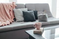 Sticka, bok, kakao och filt på soffan royaltyfria foton