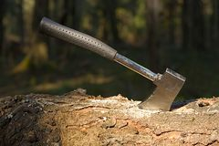 Sticked wood axe royalty free stock photo