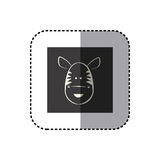 sticker of black background square with face of zebra Royalty Free Stock Photography