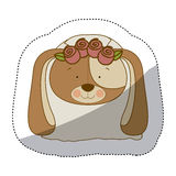 Sticker colorful and half shadow with face of bride dog Stock Photos