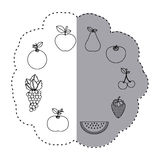 Sticker contour pattern with fruits in circular shape Royalty Free Stock Images