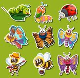 Sticker design for different kinds of insects. Illustration Royalty Free Stock Images