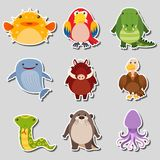 Sticker design with different types of animals. Illustration Stock Image