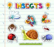 Sticker design with different types of insects. Illustration Stock Photography