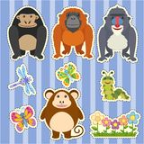 Sticker design for different types of monkeys. Illustration Stock Image