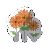 sticker faded set collection sunflowers floral icon design Royalty Free Stock Image