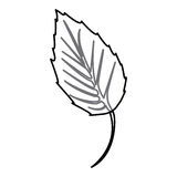 Sticker figure leaf icon. Illustraction design image Stock Images