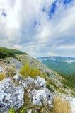 Sticker fram på foten av berget Arkivbild
