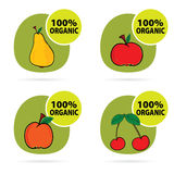 Sticker of fruit organic vector Royalty Free Stock Photography