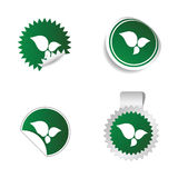 Sticker green color with white leaf icon  Stock Photo