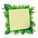 Sticker on green leaves Royalty Free Stock Photo