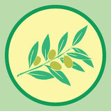 Sticker with olives branch. In bright colors Royalty Free Stock Images