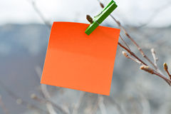 Sticker and peg Royalty Free Stock Photo