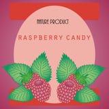Sticker with raspberry Royalty Free Stock Photos