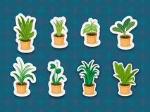 Sticker series of plants Stock Images