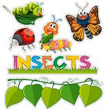 Sticker set with different insects in garden. Illustration Stock Photo