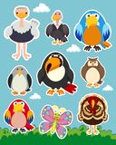 Sticker set with different types of birds. Illustration Stock Images