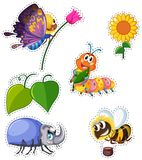 Sticker set with many types of insects. Illustration Stock Image