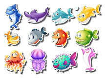 Sticker set of sharks and fish Royalty Free Stock Image