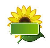 Sticker and sunflower Royalty Free Stock Photos