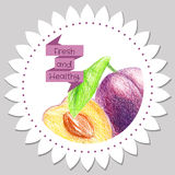 Sticker template. Healthy and fresh plum. Stock Images