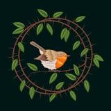 Stickerei-Schlehdornniederlassungen und Rotkehlchenvogel Vektorillustrations-Weinlesedesign lizenzfreie abbildung