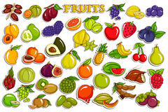 Stickerinzameling voor vers en gezond geassorteerd fruit Stock Fotografie