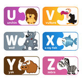 Stickers alphabet animals from U to Z. Vector illustration, eps stock illustration