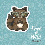 Stickers with a cute raccoon Royalty Free Stock Image