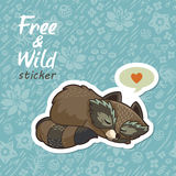 Stickers with a cute raccoon Stock Image