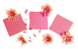 Stickers with flowers Royalty Free Stock Photo
