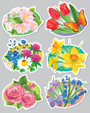 Stickers flowers Royalty Free Stock Photo