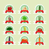 Stickers for fresh ripe vegetables in cartoon-style Stock Photo