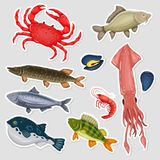 Stickers seafood set with crab, fish, mussel and shrimp. On gray background. Design for restaurant menu, market. Marine creatures in flat style, sticky label Royalty Free Stock Images