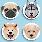 Stickers set of pug husky akita havanese. For flyers invitation posters brochure banners royalty free illustration