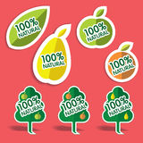 Stickers. With text for natural products Royalty Free Stock Photos