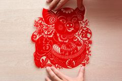 Sticking fluffy red flat paper-cut sticker as symbol of Chinese New Year of the pig the Chinese means the pig brings you money. Sticking a fluffy red flat paper stock photos