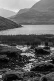 Stickle Tarn-Sumpf Stockfoto