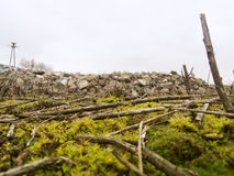 Sticks amid the stone rubble royalty free stock photo
