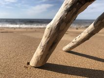 Sticks on a beach. Royalty Free Stock Photo