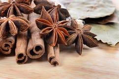 Sticks cinnamon and badian close up Stock Photos