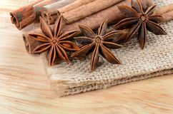 Sticks cinnamon and badian close up Stock Image