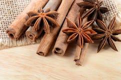 Sticks cinnamon and badian close up Royalty Free Stock Photos