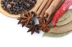 Sticks cinnamon and badian close up Stock Photo