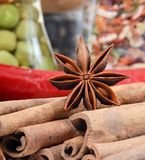 Sticks cinnamon and badian close up Royalty Free Stock Photo